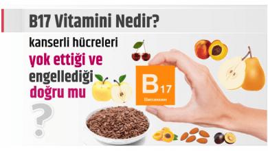 Photo of B17 Vitamini Nedir? Kanserli hücreleri yok ettiği ve engellediği doğrumu?