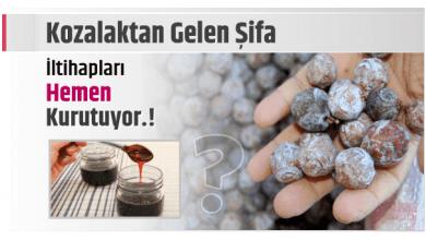 Photo of Kozalaktan Gelen Şifa İltihapları Hemen Kurutuyor.!