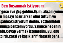 Photo of BEN BOŞANMAK İSTİYORUM!