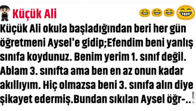 Photo of KÜÇÜK ZEKA KÜPÜ ALİ