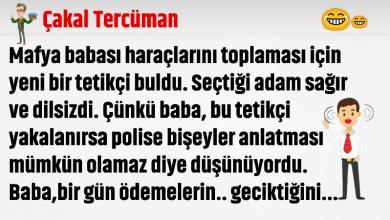 Photo of Çakal Tercüman