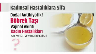 Photo of Kadınsal Hastalıklara Şifa Doğal Antibiyotik!