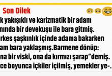 Photo of Son Dilek