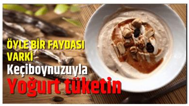 Photo of Keçiboynuzuyla yoğurt tüketin, Çünkü öyle bir faydası varki!