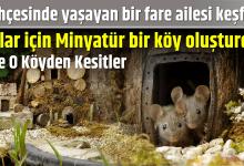 Photo of Bahçesinde yaşayan bir fare ailesi keşfetti ve Onlar için Minyatür bir köy oluşturdu! İşte O Köyden Kesitler