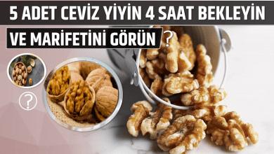 Photo of 5 Adet Ceviz Yiyin 4 Saat Bekleyin ve Marifetini Görün