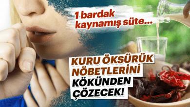 Photo of İnatçı Kuru öksürük nöbetlerini kökünden çözecek!