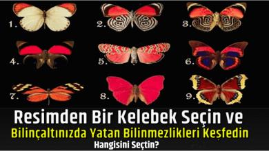 Photo of Resimden Bir Kelebek Seçin Ve Bilinçaltınızda Yatan Bilinmezlikleri Keşfedin