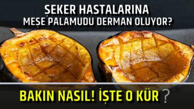 Photo of Şeker Hastalarına Meşe Palamudu Derman Oluyor? Bakın Nasıl! işte o kür!